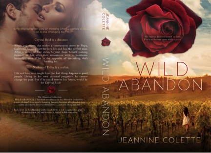 Wild Abandon Paperback.jpg